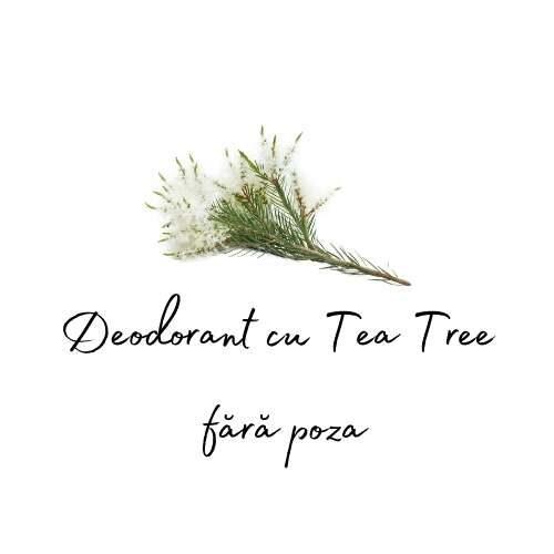 Deodorant Tea Tree